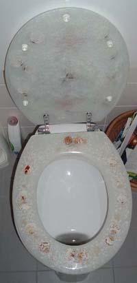 My Friend Waldine S Toilet In Holland